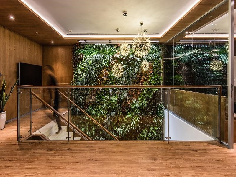 Greenery walls are placed along the office to embellish and improve the working environment